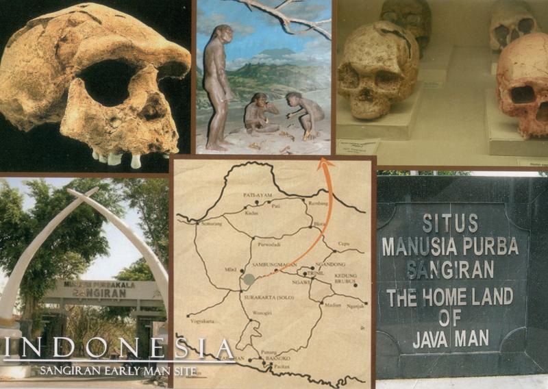 indonesia-sangiran-early-man.web